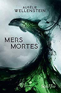 Mers mortes wellenstein
